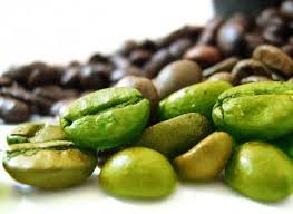 green coffee bean prof